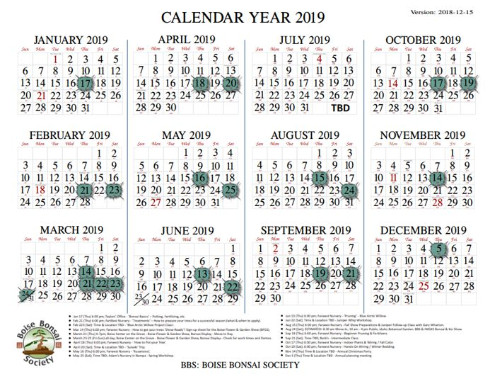 Current Calendar Year